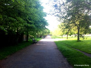 One of our Royal Parks