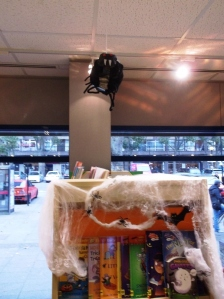 Ken The Kensal Spider on Ceiling
