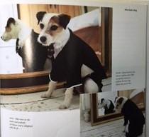 Vogue, May 2006