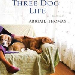 3 dog life